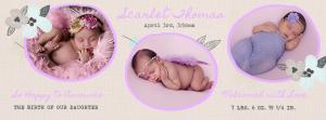 Scarlet  Newborn