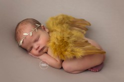 FB WEB ONLY Averi Newborn 11-24-2017 204 FB WEB