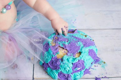 FB WEB ONLY Emersyn Daebelliehn Cake Smash 01-12-2018 145 FB WEB
