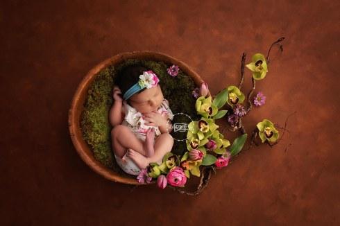 FB WEB ONLY Luna Whitman Newborn 05-21-2018 069 FB WEB